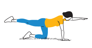 Illustration: Bird Dog exercise.